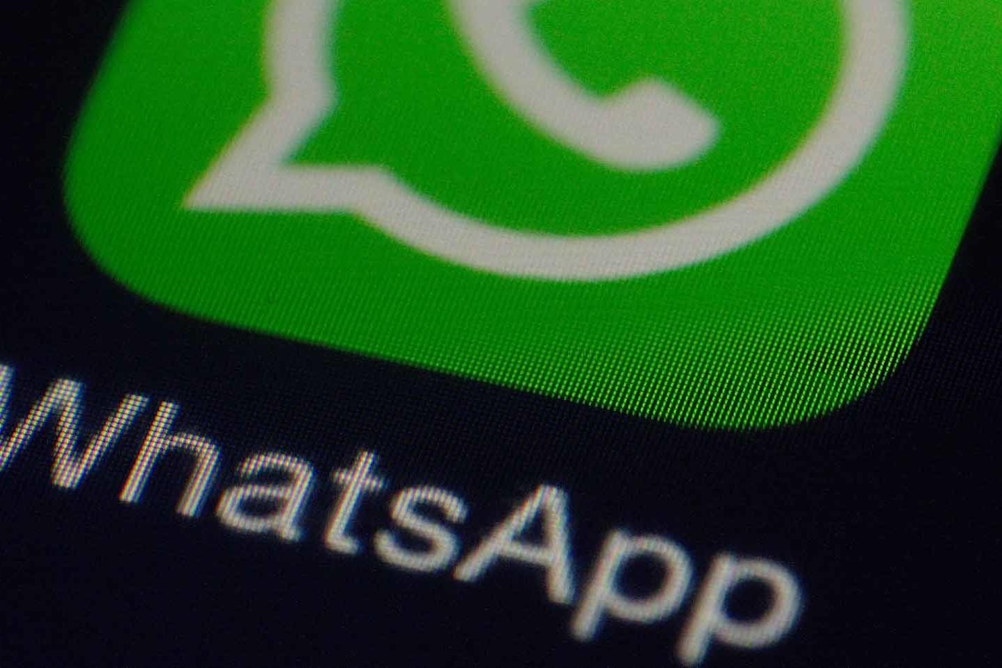 Scarica sempre gli aggiornamenti per evitare problemi con i bug Whatsapp
